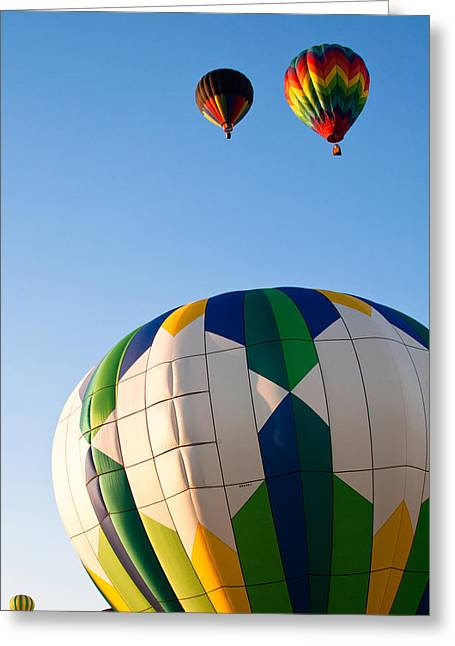 Rally Greeting Cards - Flying Away Greeting Card by David Patterson
