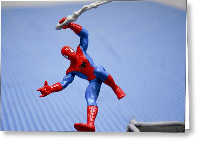 Flying Spider Greeting Cards - Flying High  Greeting Card by Malania Hammer