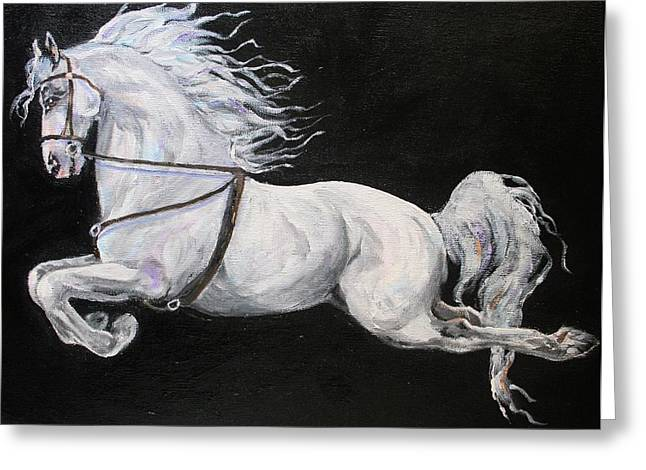 Dressage Drawings Greeting Cards - Flying Lipizan Greeting Card by Bj Redmond