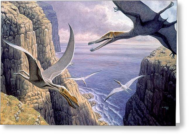 Pterosaur Greeting Cards - Flying Pterosaurs Greeting Card by Mauricio Anton