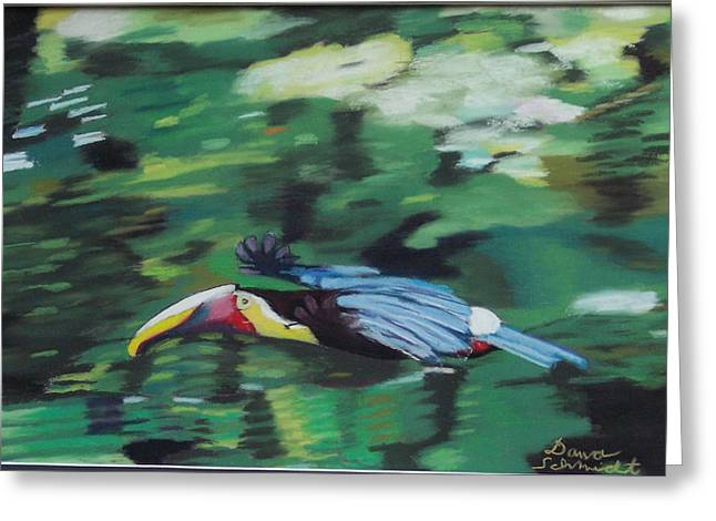 Costa Pastels Greeting Cards - Flying Toucan in Costa Rica Greeting Card by Dana Schmidt
