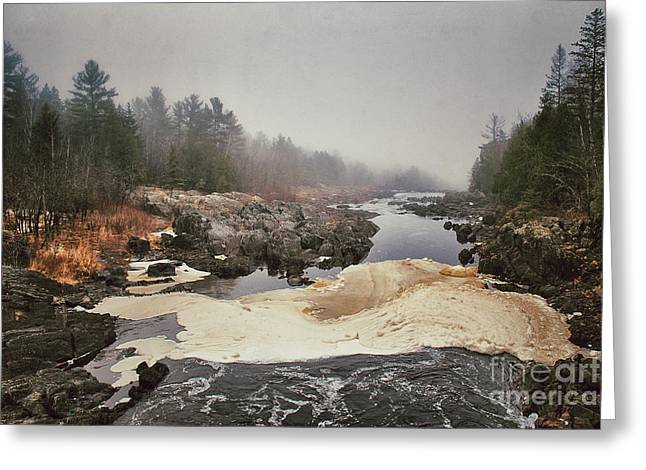 Cooke Greeting Cards - Foamy Root Beer River Greeting Card by Shutter Happens Photography
