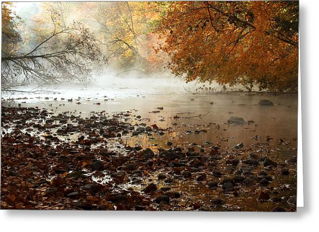 Mohicans Greeting Cards - Fog and Color Greeting Card by Amanda Kiplinger