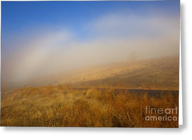 Fog Bow At Lookout Point Greeting Card by Mike  Dawson