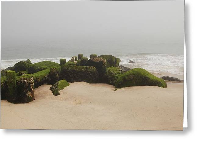 Foggy Beach Greeting Cards - Fog Sits On Bay Head Beach II- Jersey Shore Greeting Card by Angie Tirado