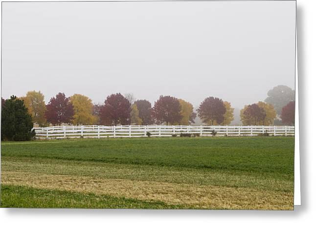Foggy Fall Greeting Card by Joel Witmeyer