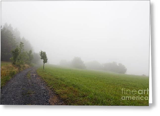 Counry Greeting Cards - Foggy Landscape Greeting Card by Michal Boubin
