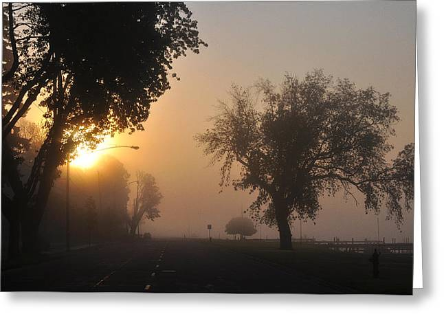 Streetlight Greeting Cards - Foggy Morn Street Greeting Card by Tim Nyberg