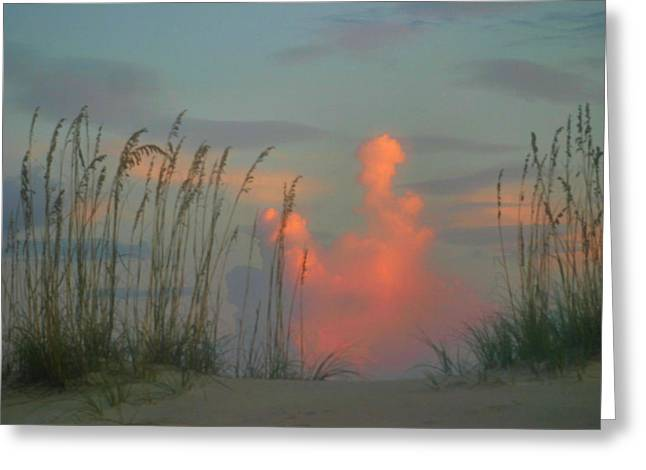 Foggy Beach Greeting Cards - Foggy Oats Greeting Card by Kristin Elmquist