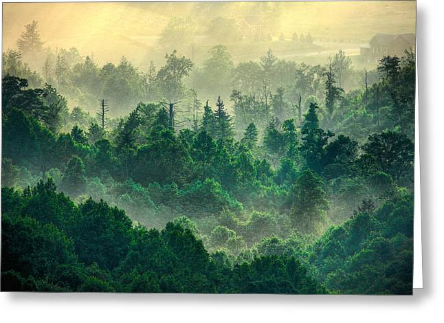 Abstract Mountains Framed Prints Greeting Cards - Foggy Treetops Greeting Card by Dan Carmichael
