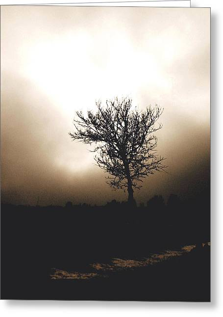 Nature Scene Greeting Cards - Foggy Winter Morning Greeting Card by Ann Powell