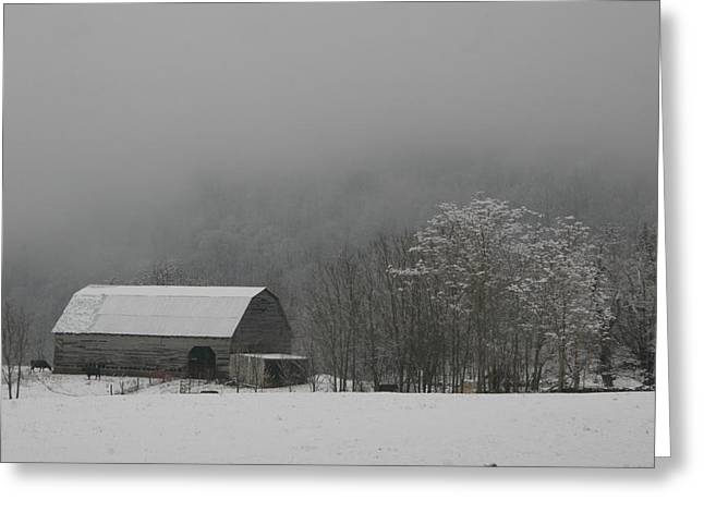 Ewing Greeting Cards - Foggy Wintery Morning Greeting Card by Christopher Ewing
