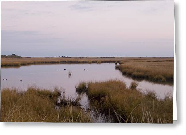 Folgers Greeting Cards - Folgers Marsh Nantucket Greeting Card by Henry Krauzyk
