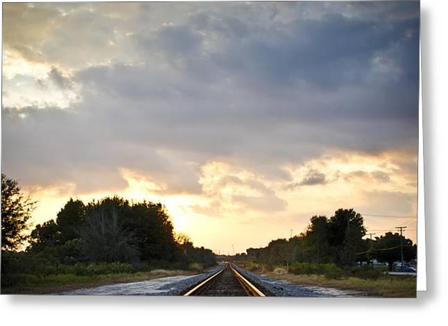 Follow the Tracks Greeting Card by Carolyn Marshall