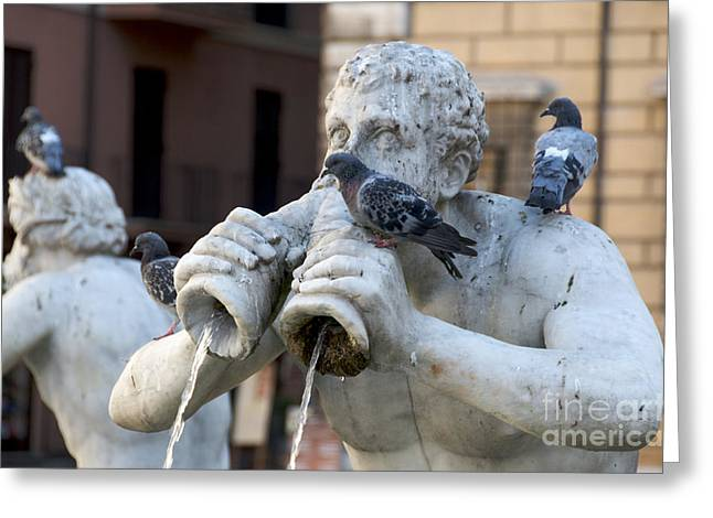 Fontana del Moro in Piazza Navona. Rome Greeting Card by BERNARD JAUBERT