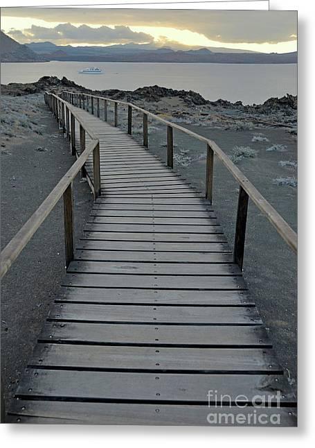 Sami Sarkis Greeting Cards - Footbridge on volcanic landscape Greeting Card by Sami Sarkis