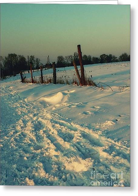 Winter Photos Greeting Cards - Footprints in the Snow Greeting Card by Jutta Maria Pusl