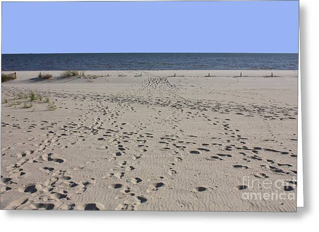 Biloxi Greeting Cards - Footprints on Biloxi Beach Greeting Card by Carol Groenen
