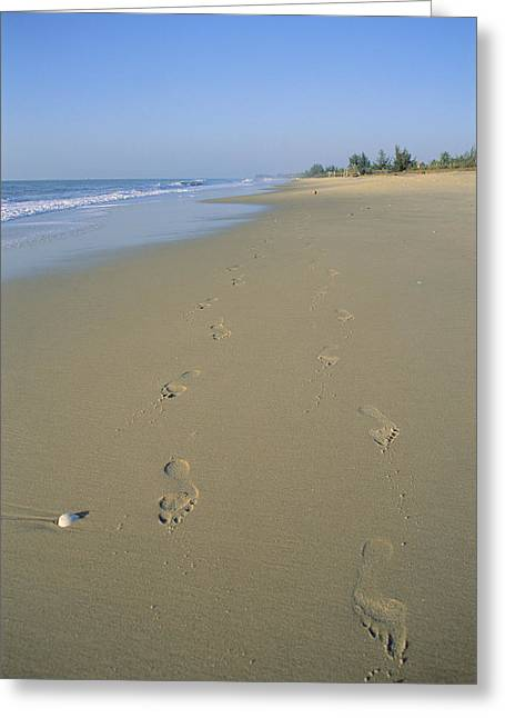 China Beach Greeting Cards - Footprints On The Beach Of Mui Ne Greeting Card by Gina Martin