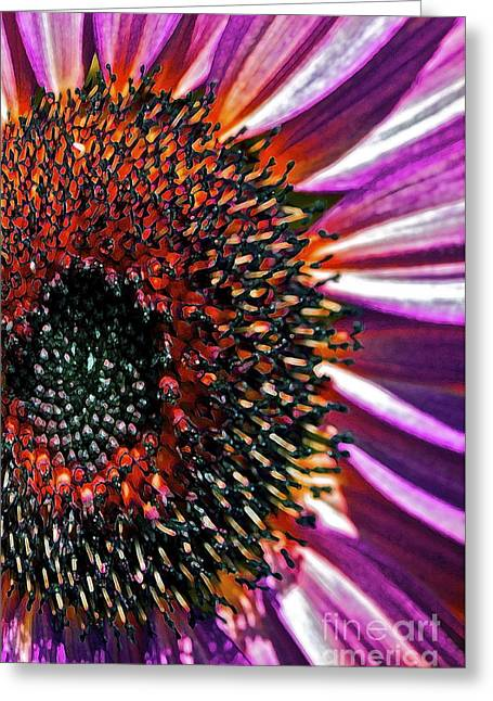Abstract Sunflower Greeting Cards - For Ana Greeting Card by Gwyn Newcombe