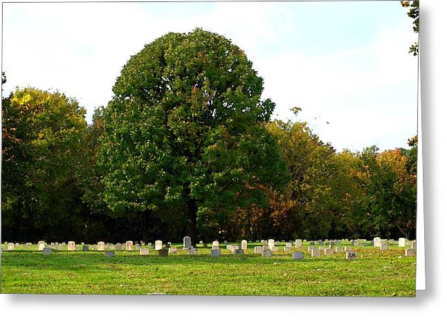 Battlefield Site Greeting Cards - For our Freedom Greeting Card by Judy  Waller