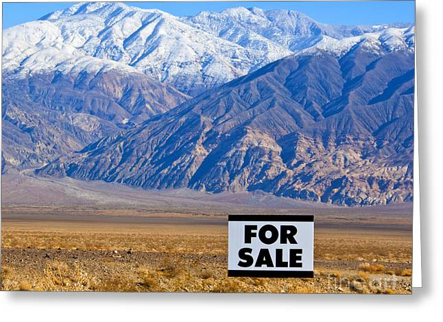 Arid Life Photographs Greeting Cards - For Sale Sign in Mountainous, Desert Landscape Greeting Card by David Buffington