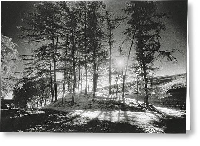 Forelacka Burial Ground Greeting Card by Simon Marsden