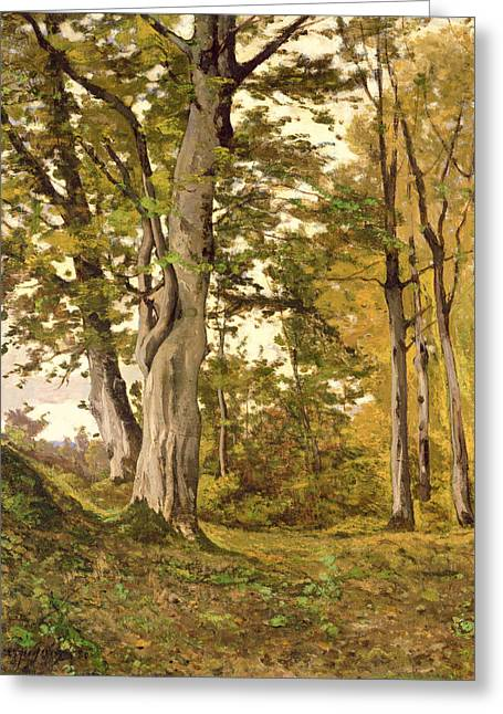 Fontainebleau Forest Greeting Cards - Forest at Fontainebleau Greeting Card by Henri-Joseph Harpignies