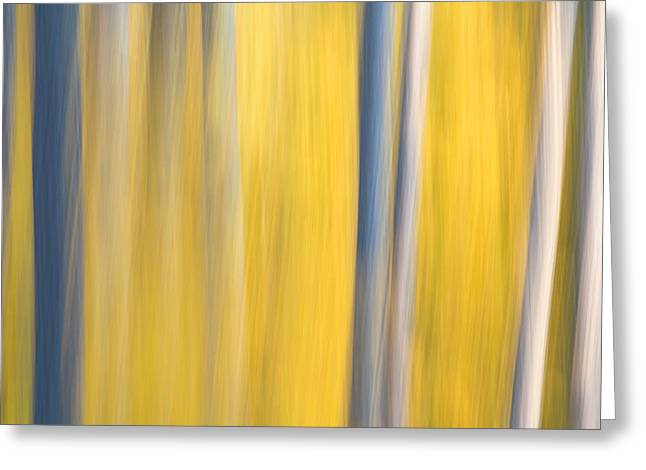 Babbitt Greeting Cards - Forest Blur Greeting Card by Adam Pender