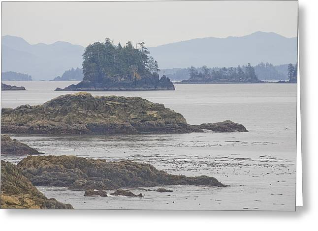 Kelp Forest Greeting Cards - Forest Covered Island On The Misty Greeting Card by Taylor S. Kennedy