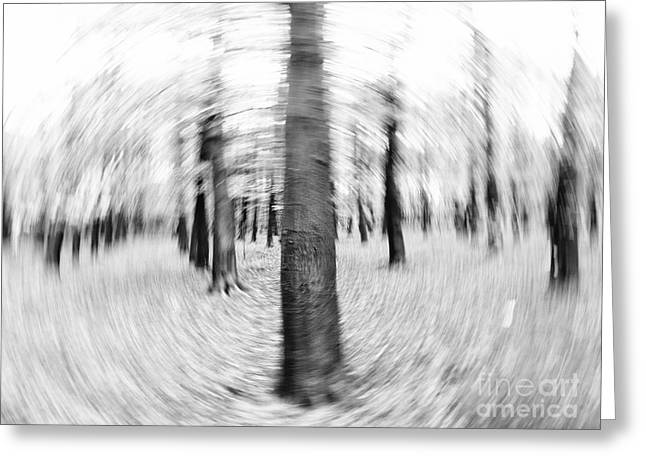 Rural Landscapes Mixed Media Greeting Cards - Abstract Black and White Nature Landscape Art Work Photograph Greeting Card by Artecco Fine Art Photography