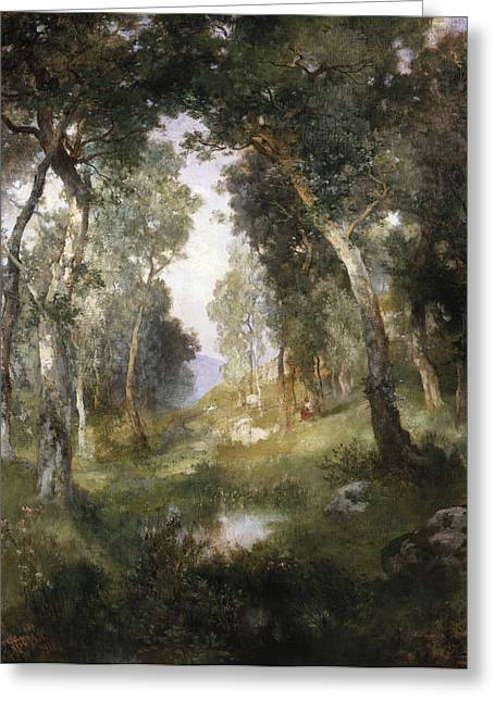 Rural Schools Paintings Greeting Cards - Forest Glade Greeting Card by Thomas Moran