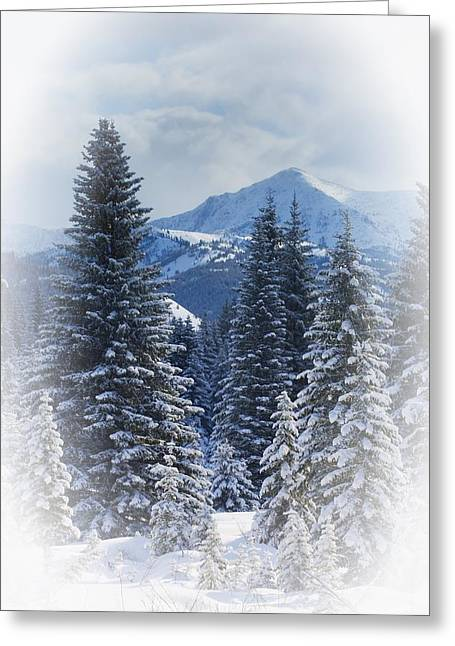 Evergreen Covered In Snow Greeting Cards - Forest In The Winter Greeting Card by Carson Ganci