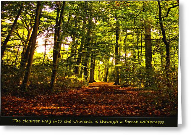 Forest Wilderness Greeting Card by Yvon van der Wijk