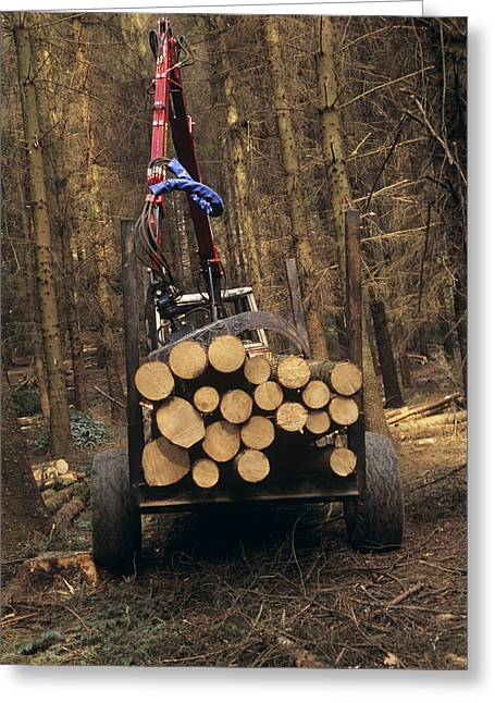 Logging Tractor Greeting Cards - Forestry Greeting Card by David Aubrey