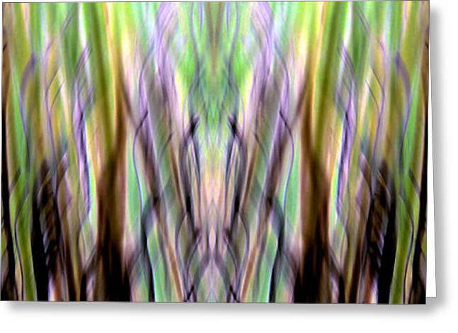 Abstract Forms Greeting Cards - Forever Searching Greeting Card by Danny Lally