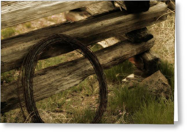 Split Rail Fence Greeting Cards - Forgotten Greeting Card by Bonnie Bruno