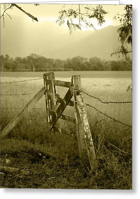 Barbed Wire Fences Greeting Cards - Forgotten Fields Greeting Card by Holly Kempe