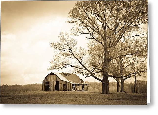 Tori Lawrence Greeting Cards - Forgotten Place Greeting Card by Victoria Lawrence