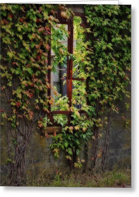 Overgrown Greeting Cards - Forgotten Greeting Card by Susan Candelario