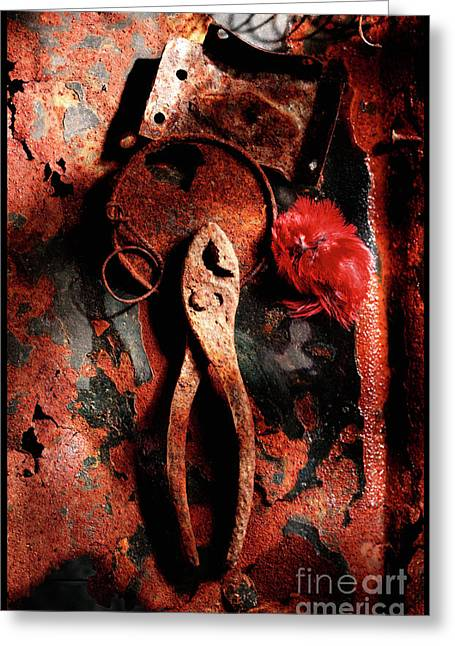 Dappled Light Greeting Cards - Forgotten Tools Greeting Card by Greg Wright