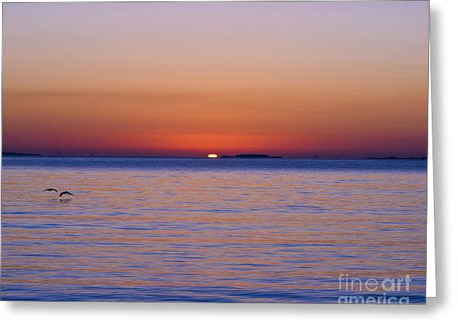 Al Powell Photography Usa Greeting Cards - Fort Sumter Sunrise Greeting Card by Al Powell Photography USA