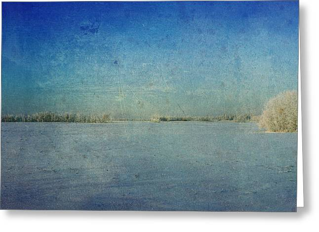 Edmonton Photographer Greeting Cards - Forty Below  Greeting Card by Jerry Cordeiro