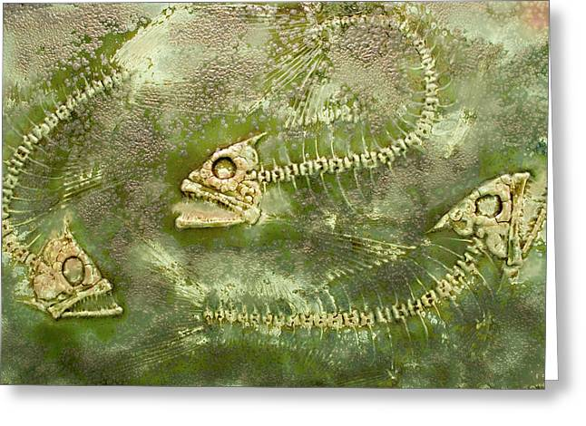 Fine Art Ceramics Greeting Cards - Fossil Fish Greeting Card by Bruce Gholson