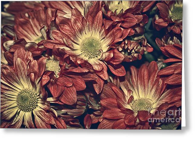 Foulee de petales - 04b Greeting Card by Variance Collections