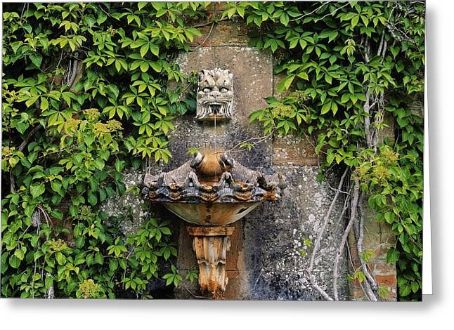 Garden Statuary Greeting Cards - Fountain In The Walled Garden, Florence Greeting Card by The Irish Image Collection