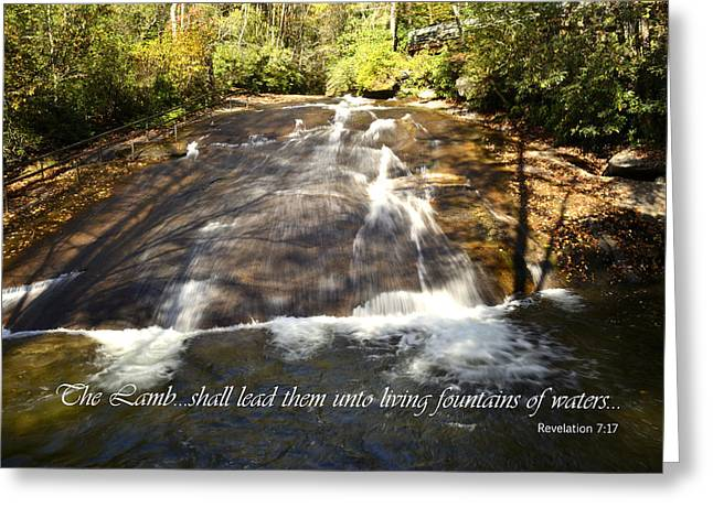 Fountains Of Waters Greeting Card by Larry Bishop