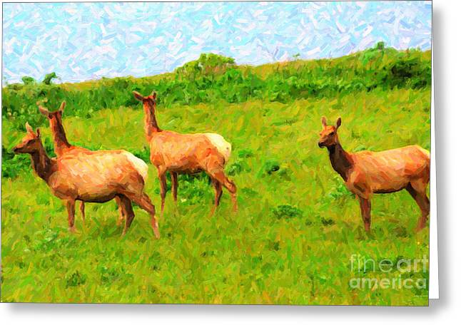 Tule Elks Greeting Cards - Four Elks Greeting Card by Wingsdomain Art and Photography