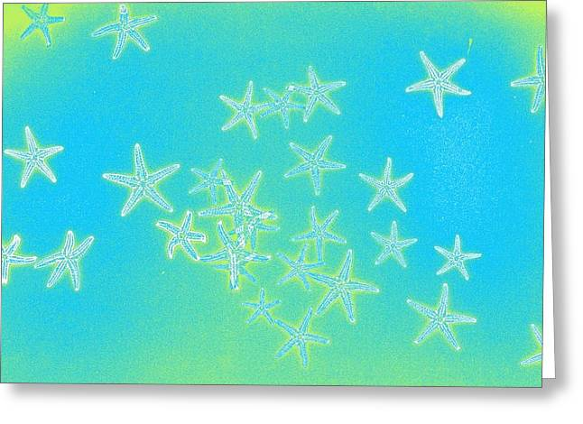 Xerox Digital Art Greeting Cards - Fourth Dimension Greeting Card by Sara Koenig King