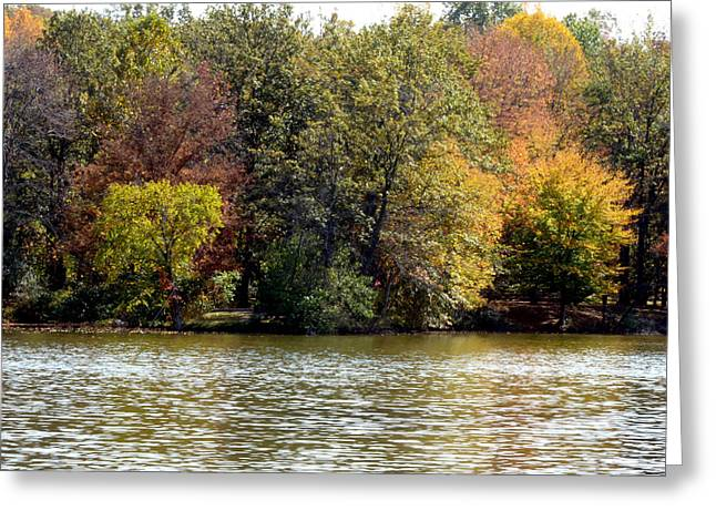 Fowler Lake 4 Greeting Card by Franklin Conour